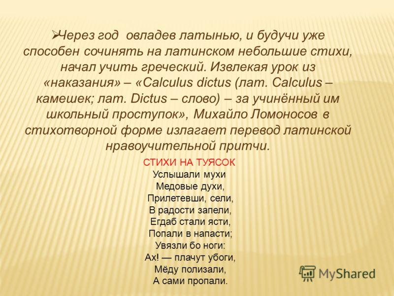 Через год овладев латынью, и будучи уже способен сочинять на латинском небольшие стихи, начал учить греческий. Извлекая урок из «наказания» – «Calculus dictus (лат. Calculus – камешек; лат. Dictus – слово) – за учинённый им школьный проступок», Михай