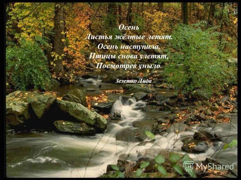 Осень Листья жёлтые летят. Осень наступила. Птицы снова улетят, Посмотрев уныло. Зезетко Лида