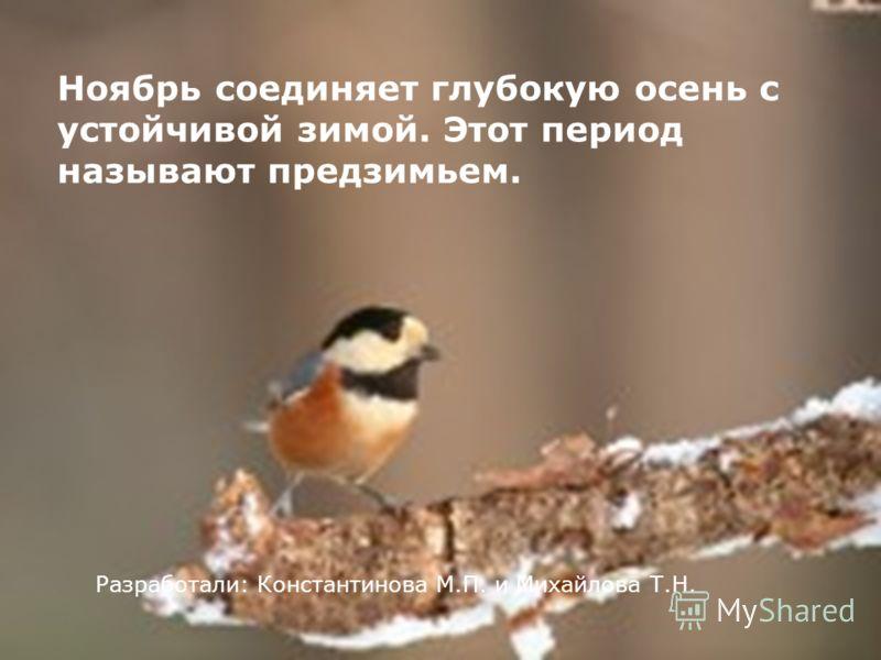 Ноябрь соединяет глубокую осень с устойчивой зимой. Этот период называют предзимьем. Разработали: Константинова М.П. и Михайлова Т.Н.