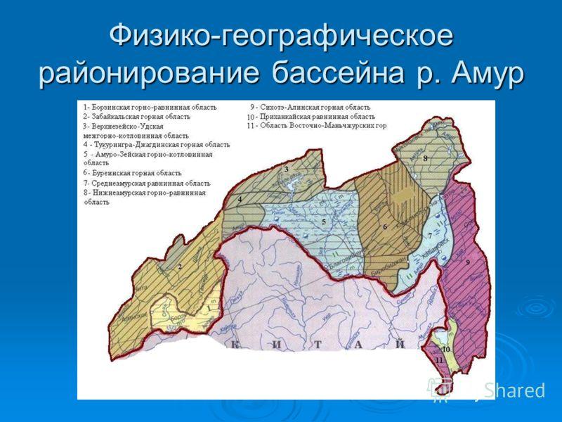 Физико-географическое районирование бассейна р. Амур