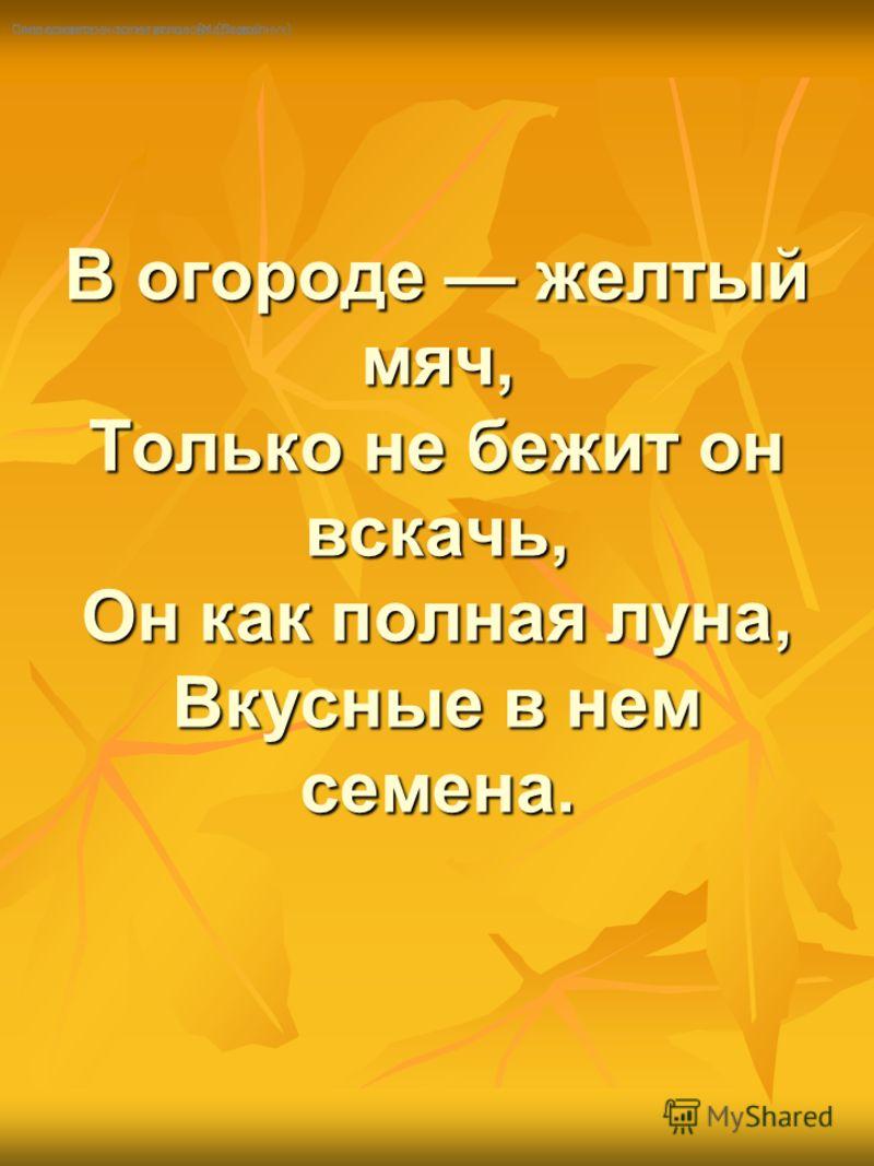 В огороде желтый мяч, Только не бежит он вскачь, Он как полная луна, Вкусные в нем семена. В огороде желтый мяч, Только не бежит он вскачь, Он как полная луна, Вкусные в нем семена. Посреди двора - золотая голова. (Подсолнух) Сама в земле - коса на у