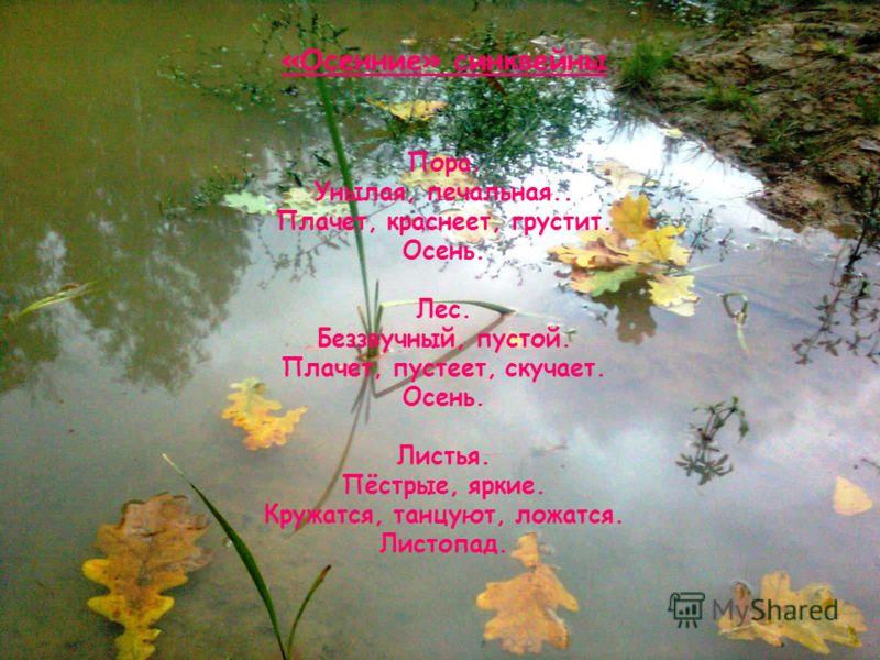 «Осенние» синквейны Пора. Унылая, печальная.. Плачет, краснеет, грустит. Осень. Лес. Беззвучный, пустой. Плачет, пустеет, скучает. Осень. Листья. Пёстрые, яркие. Кружатся, танцуют, ложатся. Листопад.