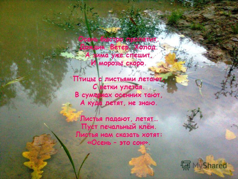 Осень быстро пролетит. Дождик. Ветер. Холод. А зима уже спешит, И морозы скоро. Птицы с листьями летают, С ветки улетая. В сумерках осенних тают, А куда летят, не знаю. Листья падают, летят… Пуст печальный клён. Листья нам сказать хотят: «Осень – это