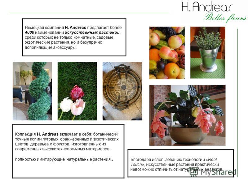 Немецкая компания H. Andreas предлагает более 4000 наименований искусственных растений, среди которых не только комнатные, садовые, экзотические растения, но и безупречно дополняющие аксессуары. Благодаря использованию технологии «Real Touch», искусс