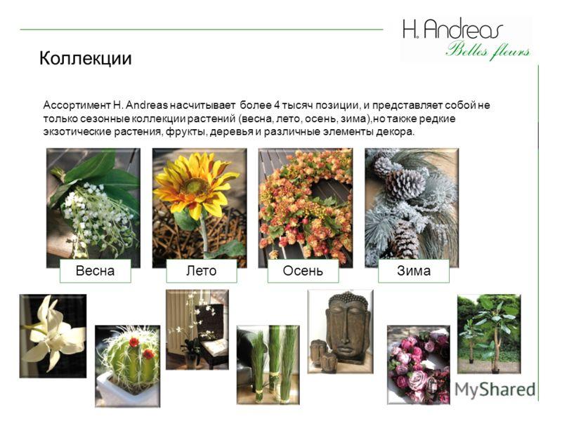 Коллекции Ассортимент H. Andreas насчитывает более 4 тысяч позиции, и представляет собой не только сезонные коллекции растений (весна, лето, осень, зима),но также редкие экзотические растения, фрукты, деревья и различные элементы декора. ВеснаЛетоЗим