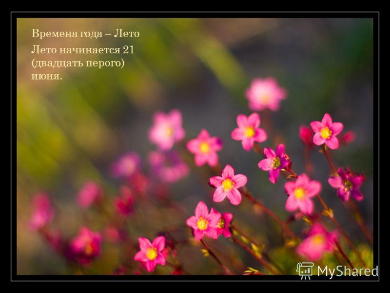 Времена года – Лето Лето начинается 21 (двадцать перого) июня.
