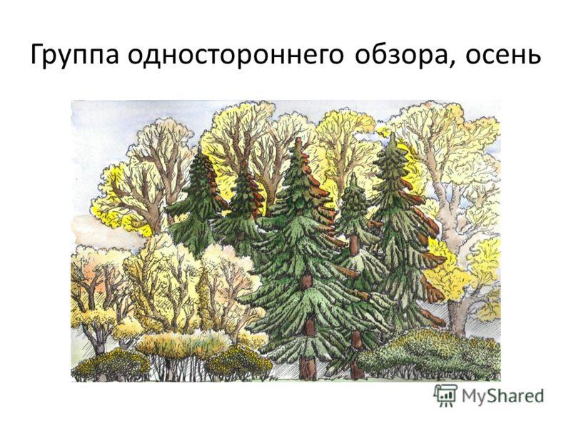 Группа одностороннего обзора, осень
