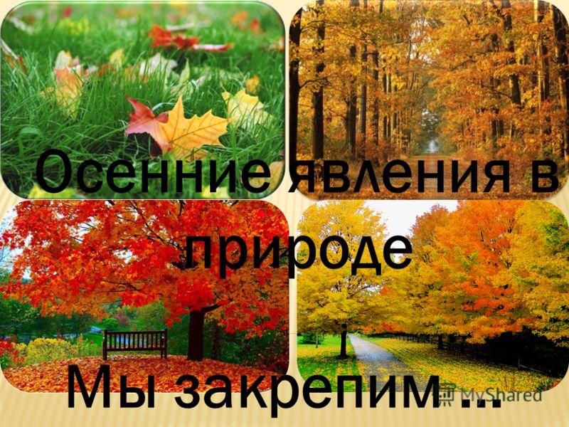 Осенние явления в природе Мы закрепим …