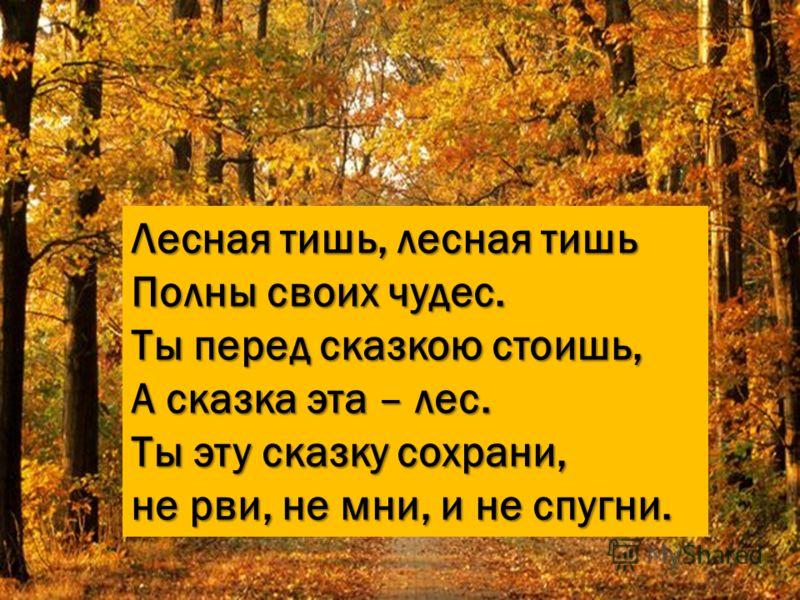 Лесная тишь, лесная тишь Полны своих чудес. Ты перед сказкою стоишь, А сказка эта – лес. Ты эту сказку сохрани, не рви, не мни, и не спугни.
