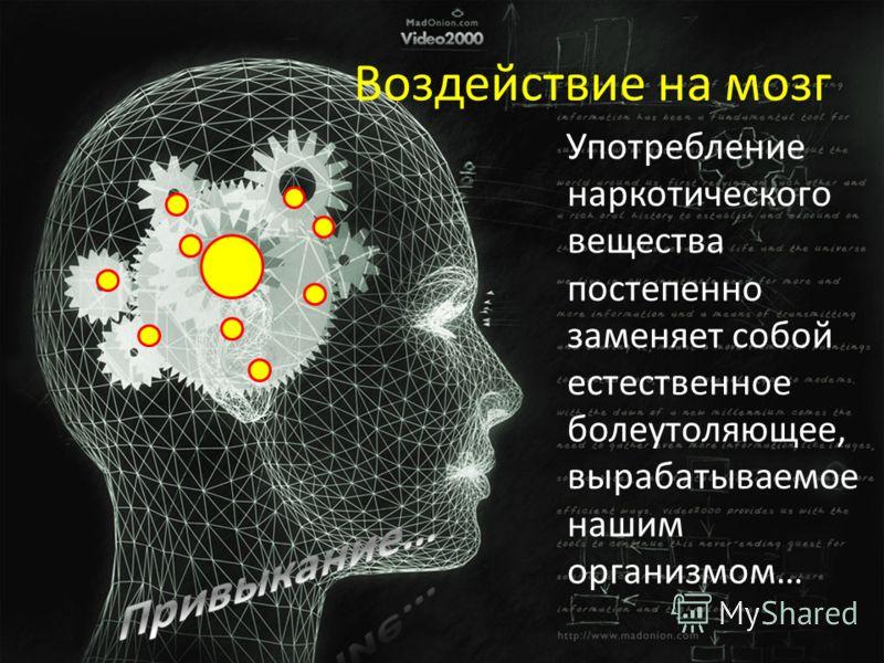 Употребление наркотического вещества постепенно заменяет собой естественное болеутоляющее, вырабатываемое нашим организмом… Воздействие на мозг