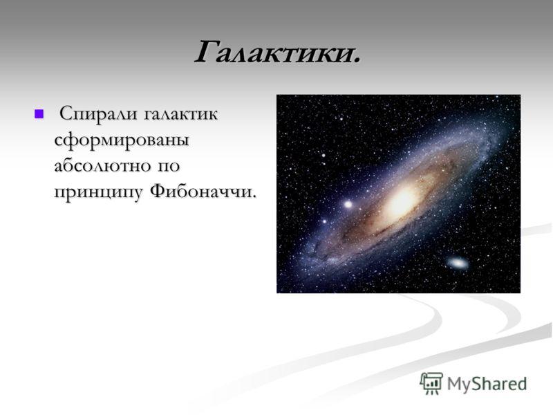 Галактики. Спирали галактик сформированы абсолютно по принципу Фибоначчи. Спирали галактик сформированы абсолютно по принципу Фибоначчи.
