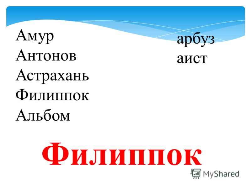 Амур Антонов Астрахань Филиппок Альбом арбуз аист Филиппок
