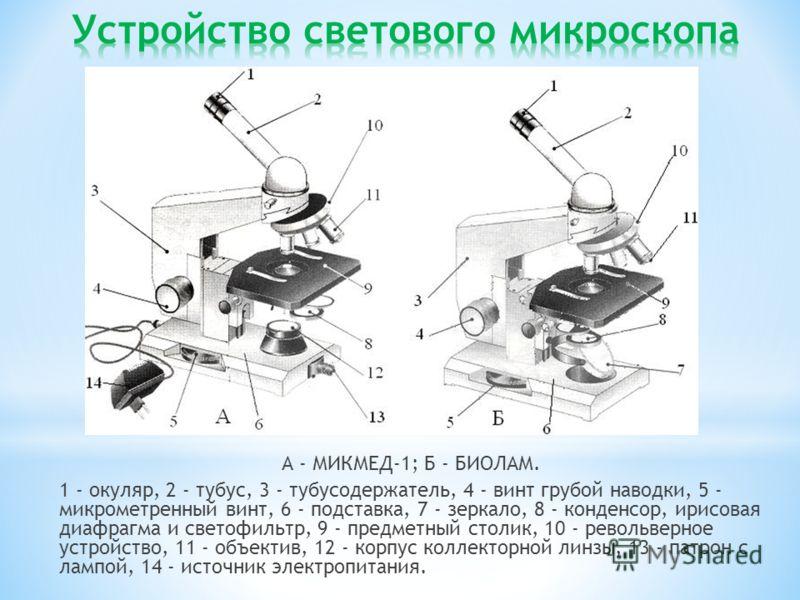 А - МИКМЕД-1; Б - БИОЛАМ. 1 - окуляр, 2 - тубус, 3 - тубусодержатель, 4 - винт грубой наводки, 5 - микрометренный винт, 6 - подставка, 7 - зеркало, 8 - конденсор, ирисовая диафрагма и светофильтр, 9 - предметный столик, 10 - револьверное устройство,