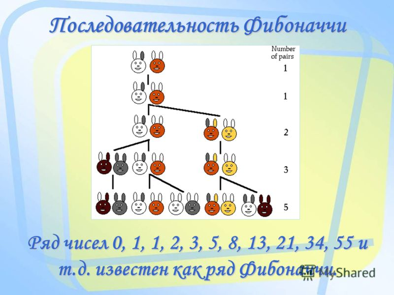 Последовательность Фибоначчи Ряд чисел 0, 1, 1, 2, 3, 5, 8, 13, 21, 34, 55 и т.д. известен как ряд Фибоначчи.