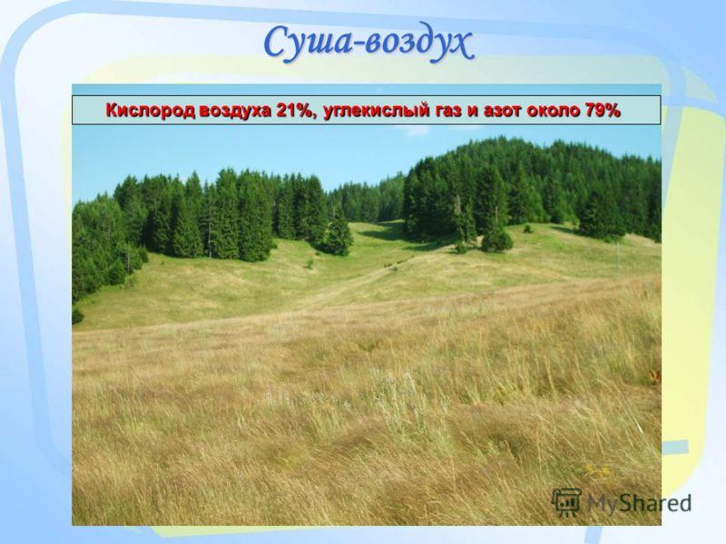 Суша-воздух Кислород воздуха 21%, углекислый газ и азот около 79%