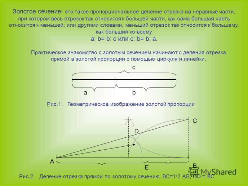 с аb Рис.1. Геометрическое изображение золотой пропорции Практическое знакомство с золотым сечением начинают с деления отрезка прямой в золотой пропорции с помощью циркуля и линейки. А D C B E Рис.2. Деление отрезка прямой по золотому сечению. ВС=1\2
