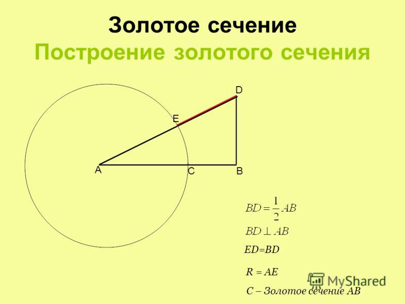 Золотое сечение Свойства. Число Фидия Ф не зависит от длины отрезка и называется числом Фидия φ не зависит от длины отрезка