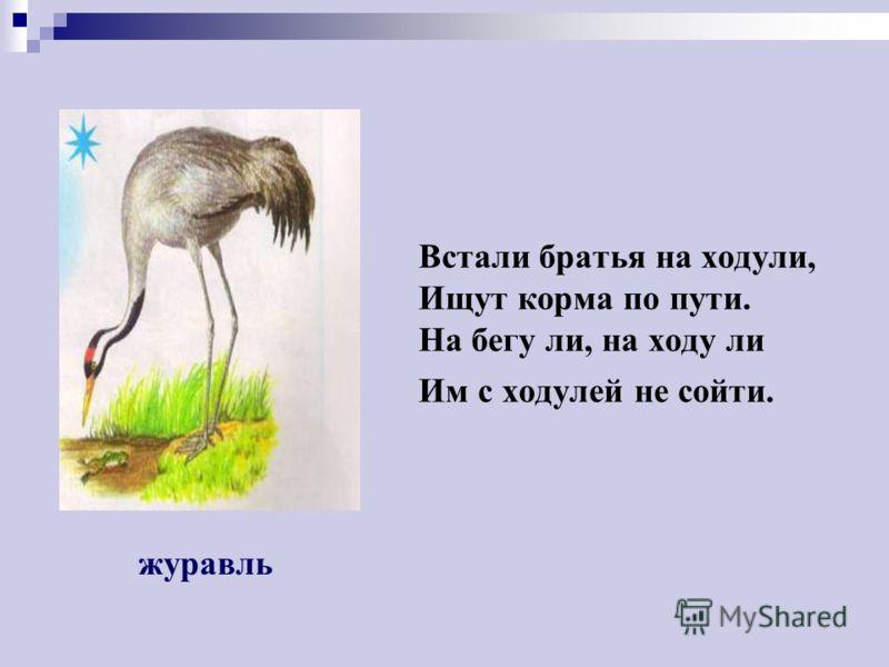Угадайте, что за птичка – темненькая невеличка. Беленькая с живота, Хвост раздвинут в два хвоста. ПЕРЕЛЕТНЫЕ ПТИЦЫ ласточка