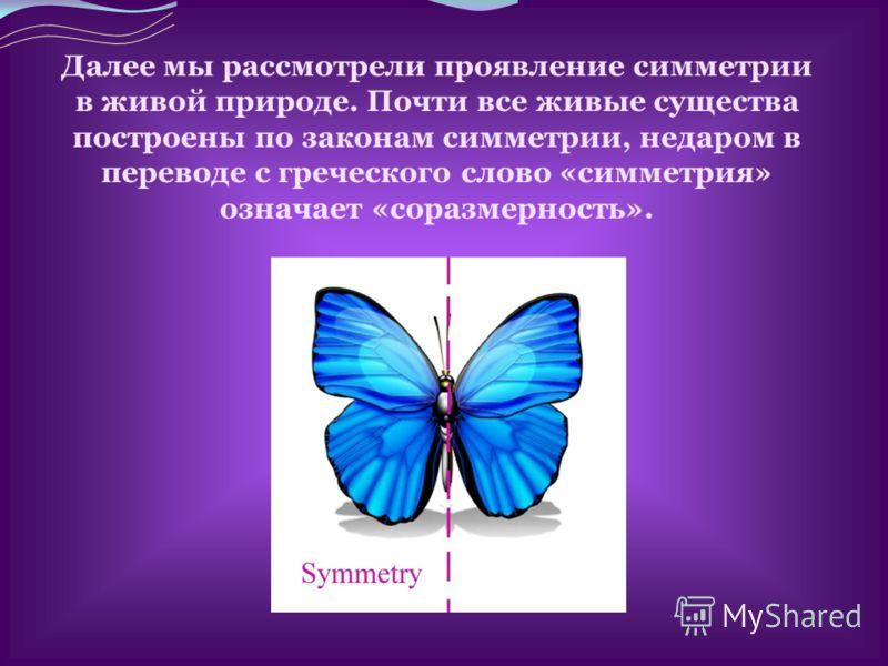 Далее мы рассмотрели проявление симметрии в живой природе. Почти все живые существа построены по законам симметрии, недаром в переводе с греческого слово «симметрия» означает «соразмерность».