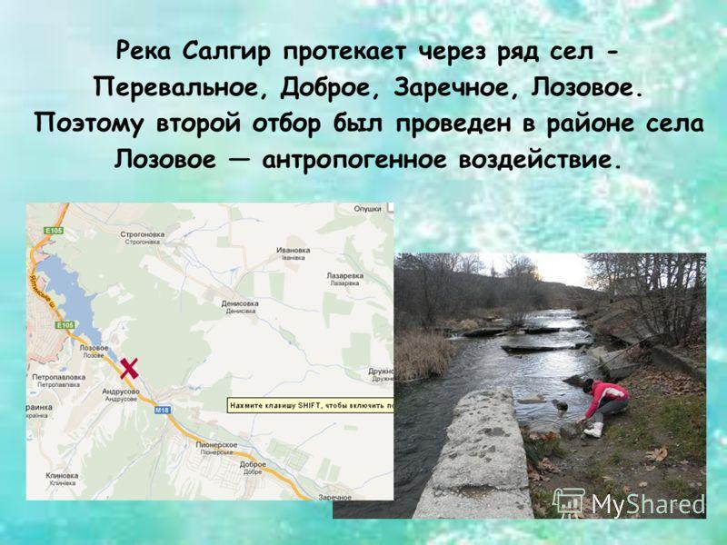 Река Салгир протекает через ряд сел - Перевальное, Доброе, Заречное, Лозовое. Поэтому второй отбор был проведен в районе села Лозовое антропогенное воздействие.