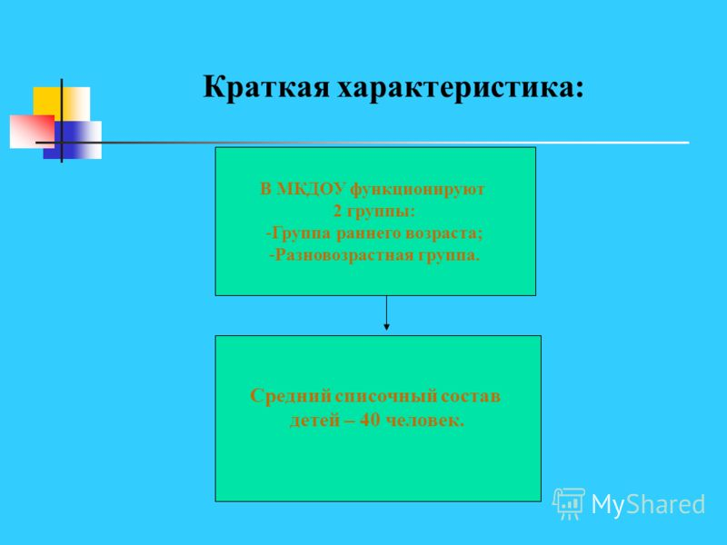 Краткая характеристика: В МКДОУ функционируют 2 группы: -Группа раннего возраста; -Разновозрастная группа. Средний списочный состав детей – 40 человек.