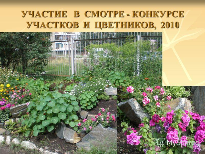 УЧАСТИЕ В СМОТРЕ - КОНКУРСЕ УЧАСТКОВ И ЦВЕТНИКОВ, 2010