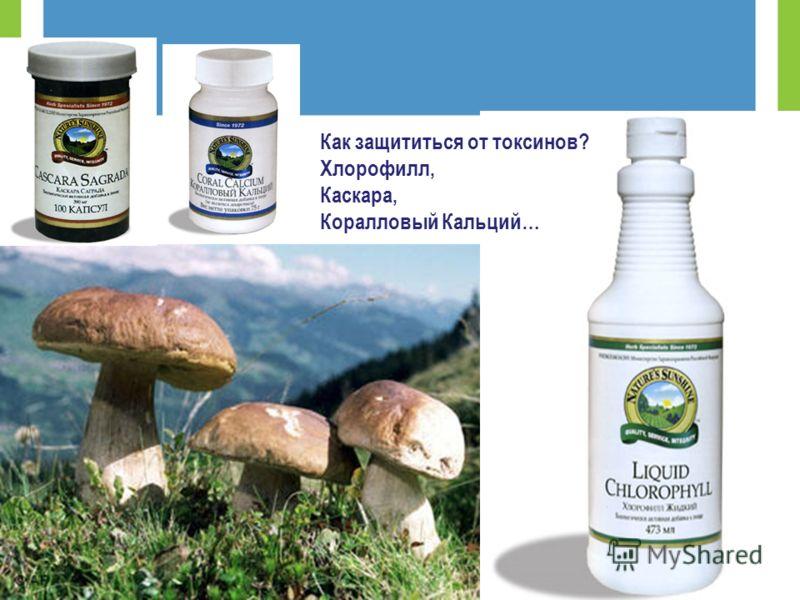 Как защититься от токсинов? Хлорофилл, Каскара, Коралловый Кальций…