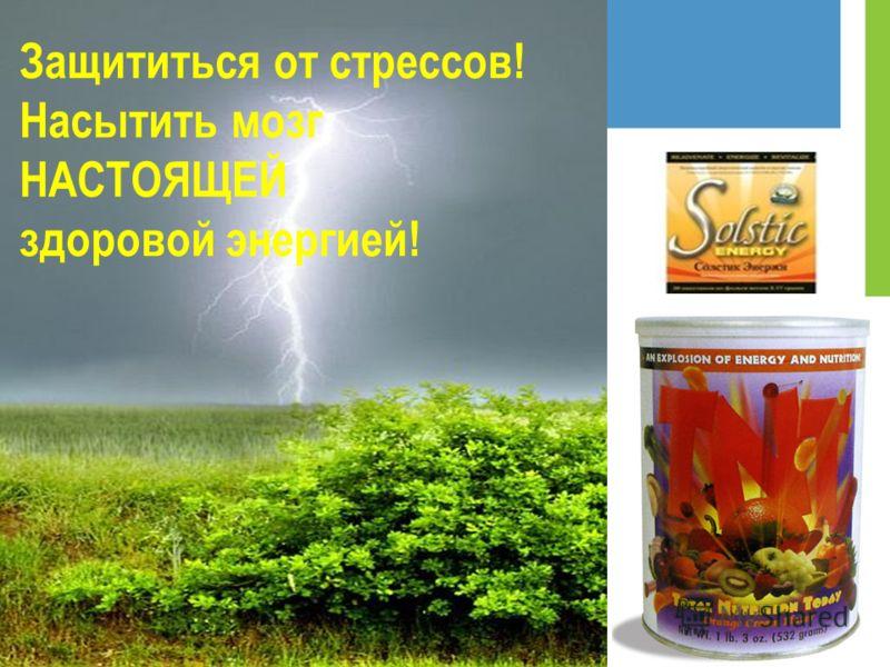 Защититься от стрессов! Насытить мозг НАСТОЯЩЕЙ здоровой энергией!