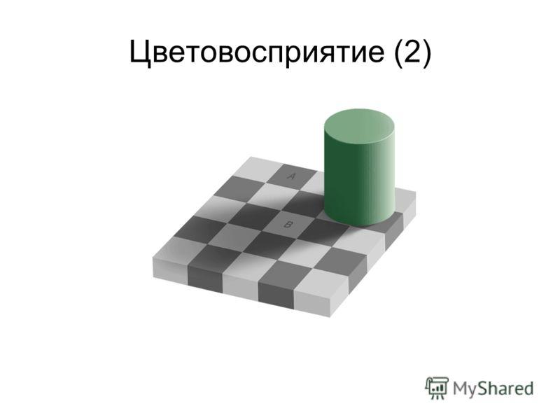 Цветовосприятие (2)