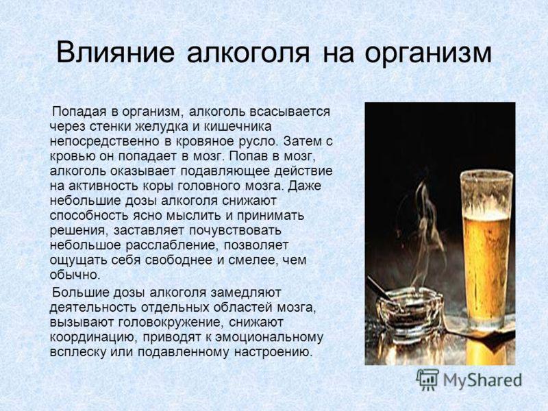 Влияние алкоголя на организм Попадая в организм, алкоголь всасывается через стенки желудка и кишечника непосредственно в кровяное русло. Затем с кровью он попадает в мозг. Попав в мозг, алкоголь оказывает подавляющее действие на активность коры голов