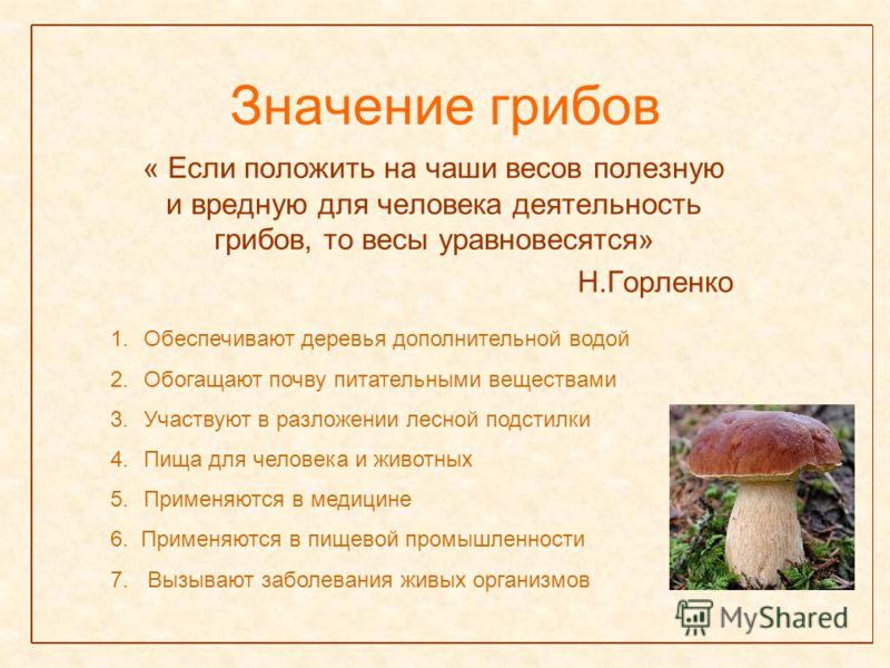 Значение грибов « Если положить на чаши весов полезную и вредную для человека деятельность грибов, то весы уравновесятся» Н.Горленко 1.Обеспечивают деревья дополнительной водой 2.Обогащают почву питательными веществами 3.Участвуют в разложении лесной