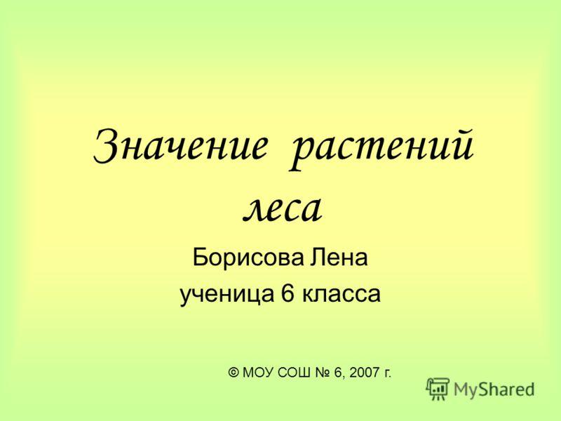 Значение растений леса Борисова Лена ученица 6 класса © МОУ СОШ 6, 2007 г.