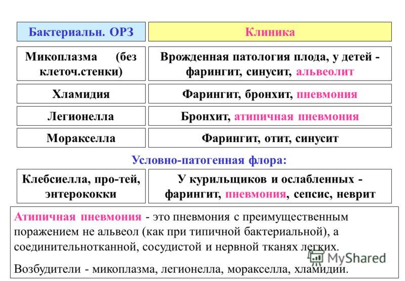 Бактериальн. ОРЗКлиника Клебсиелла, про-тей, энтерококки У курильщиков и ослабленных - фарингит, пневмония, сепсис, неврит ХламидияФарингит, бронхит, пневмония ЛегионеллаБронхит, атипичная пневмония МоракселлаФарингит, отит, синусит Атипичная пневмон