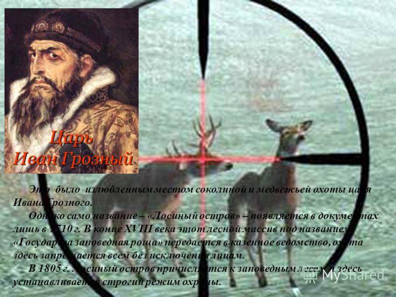 Царь Иван Грозный Это было излюбленным местом соколиной и медвежьей охоты царя Ивана Грозного. Однако само название – «Лосиный остров» – появляется в документах лишь в 1710 г. В конце XVIII века этот лесной массив под названием «Государева заповедная