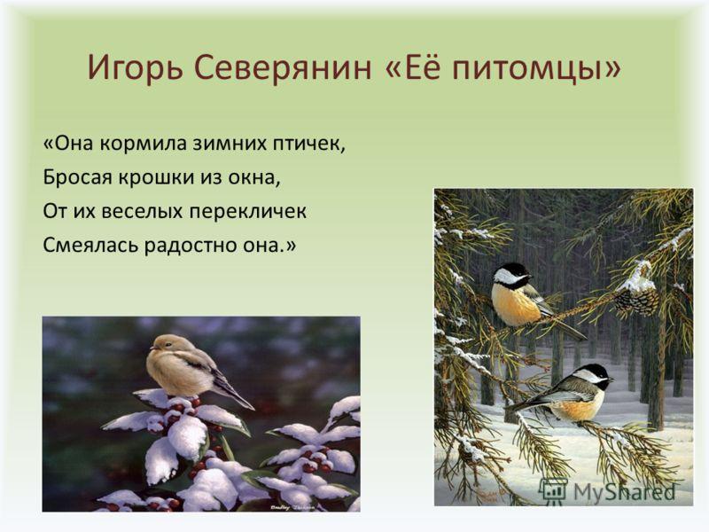 Игорь Северянин «Её питомцы» «Она кормила зимних птичек, Бросая крошки из окна, От их веселых перекличек Смеялась радостно она.»