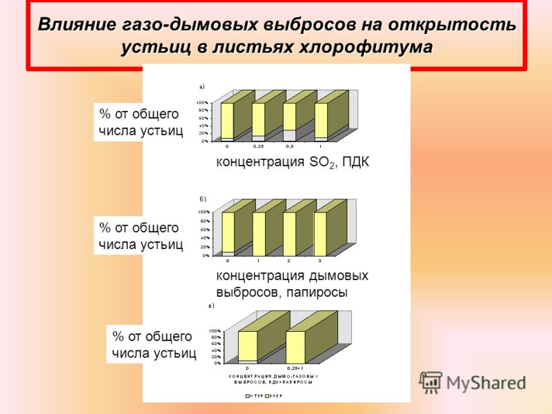 Влияние газо-дымовых выбросов на открытость устьиц в листьях хлорофитума % от общего числа устьиц концентрация SO 2, ПДК концентрация дымовых выбросов, папиросы