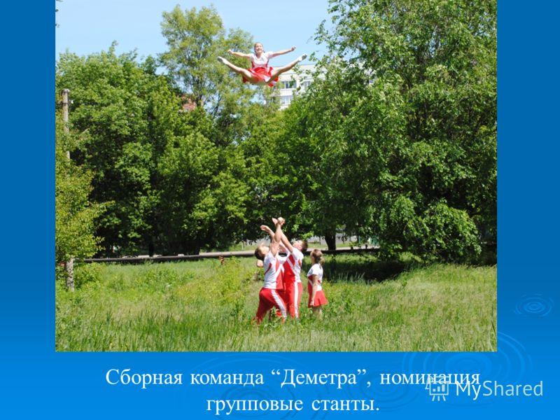 Сборная команда Деметра, номинация групповые станты.