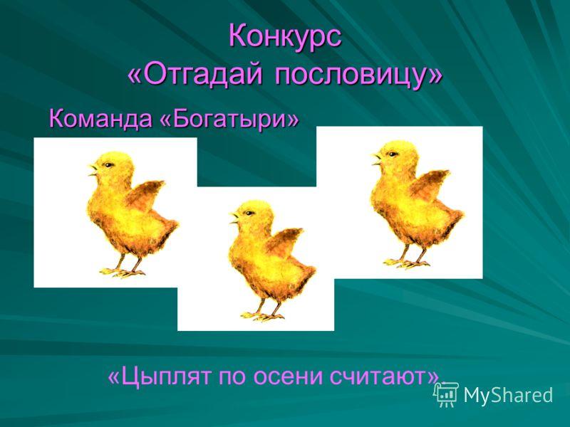 Конкурс «Отгадай пословицу» Команда «Богатыри» Команда «Богатыри» «Цыплят по осени считают».