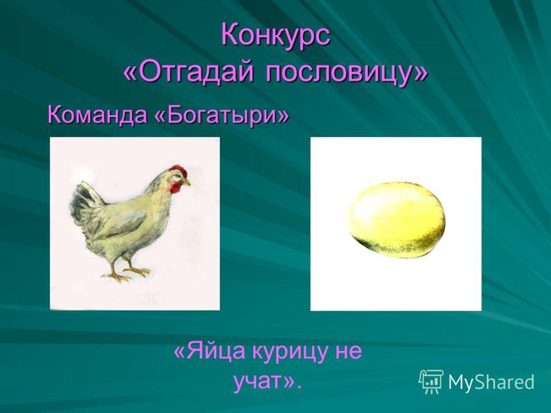 Конкурс «Отгадай пословицу» Команда «Богатыри» Команда «Богатыри» «Яйца курицу не учат».
