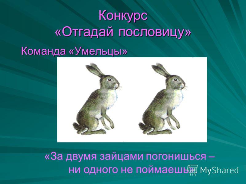 Конкурс «Отгадай пословицу» Команда «Умельцы» Команда «Умельцы» «За двумя зайцами погонишься – ни одного не поймаешь».