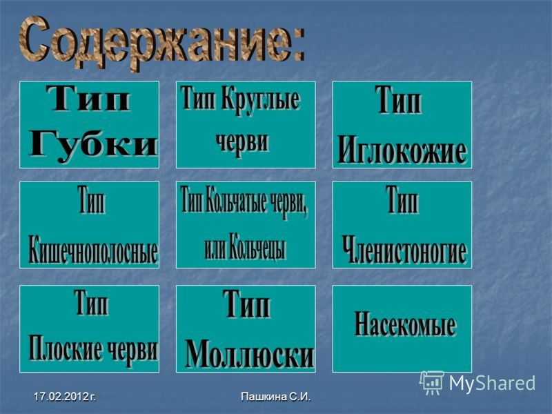 17.02.2012 г.Пашкина С.И.