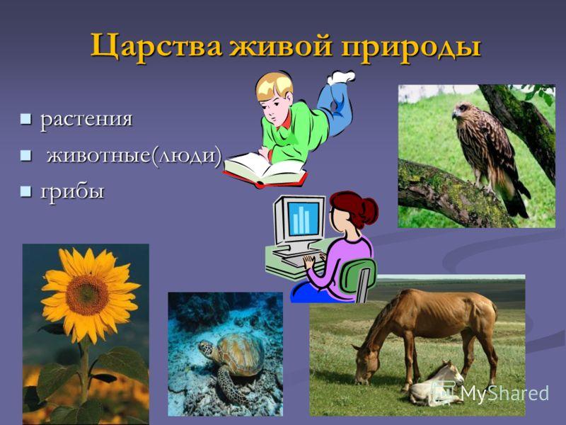 Царства живой природы растения растения животные(люди) животные(люди) грибы грибы