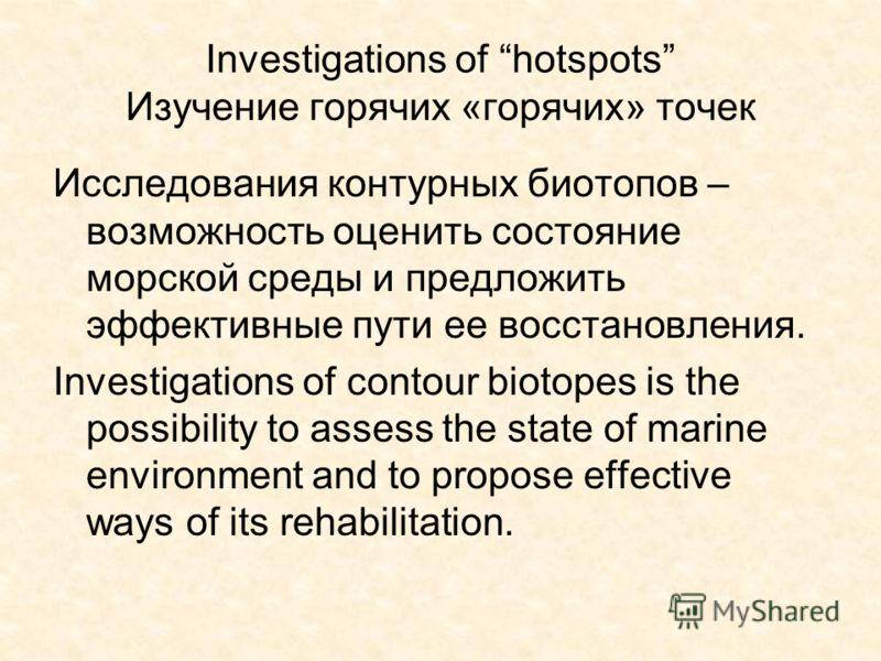 Investigations of hotspots Изучение горячих «горячих» точек Исследования контурных биотопов – возможность оценить состояние морской среды и предложить эффективные пути ее восстановления. Investigations of contour biotopes is the possibility to assess