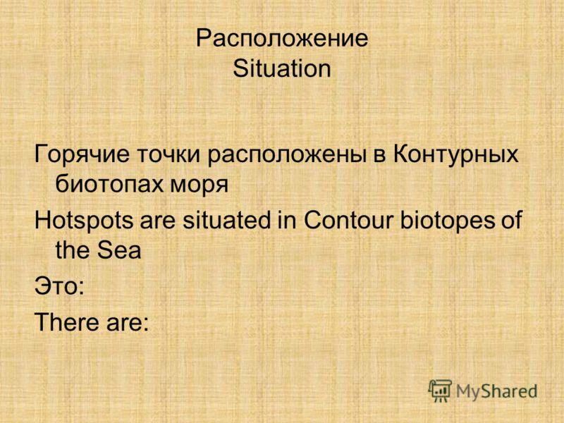Расположение Situation Горячие точки расположены в Контурных биотопах моря Hotspots are situated in Contour biotopes of the Sea Это: There are: