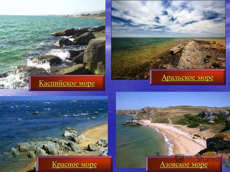 Каспийское море Аральское море Азовское море Красное море
