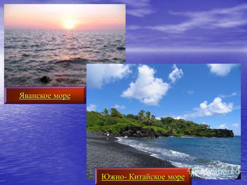 Яванское море Южно- Китайское море