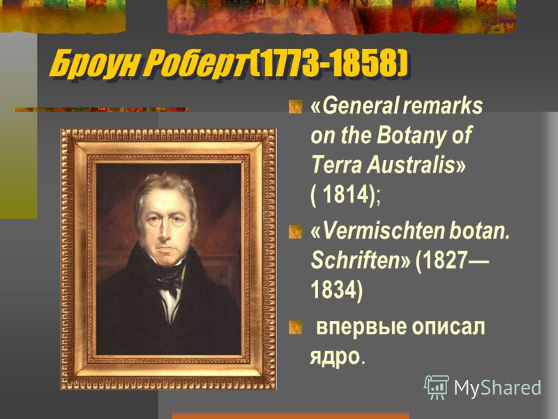 Броун Роберт (1773-1858) « General remarks on the Botany of Terra Australis » ( 1814) ; « Vermischten botan. Schriften » (1827 1834) впервые описал ядро.