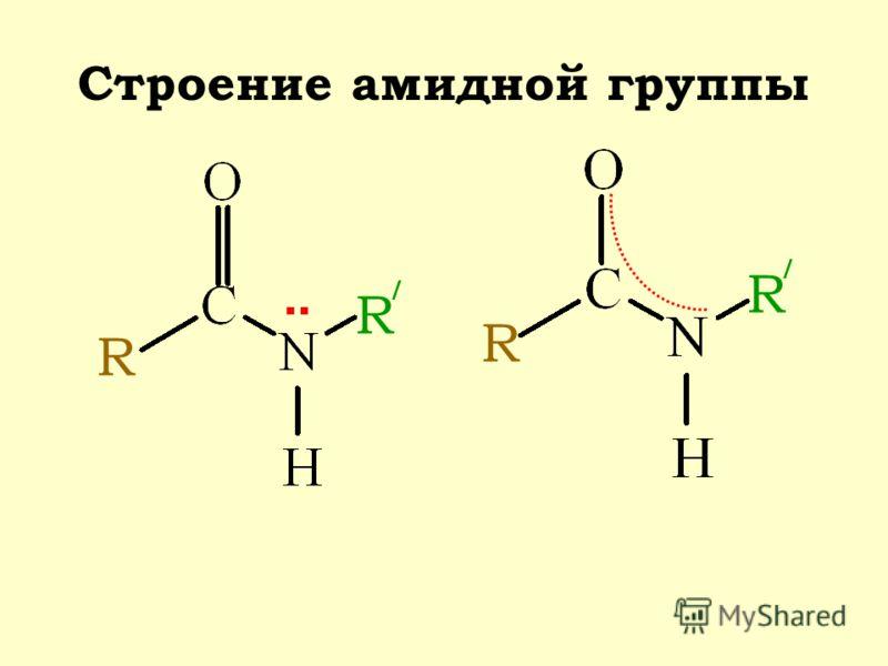 Строение амидной группы R / R R R /