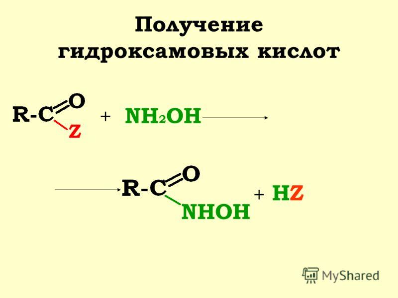 Получение гидроксамовых кислот + NH 2 OH NHOH + HZHZ