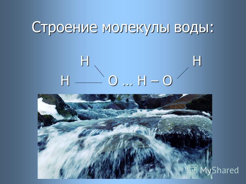 Строение молекулы воды: H H H H H О … H – O H О … H – O